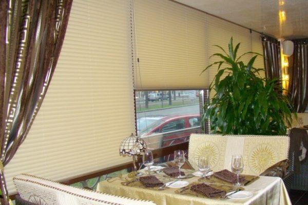 Wide_window_Plisse-blinds1